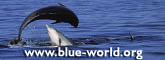 www.blue-world.org